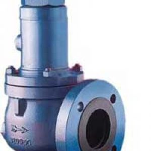 Ccoe Approved Safety Relief Valve India
